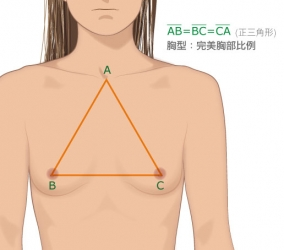 Breasts Surgery - 黃金密碼正常